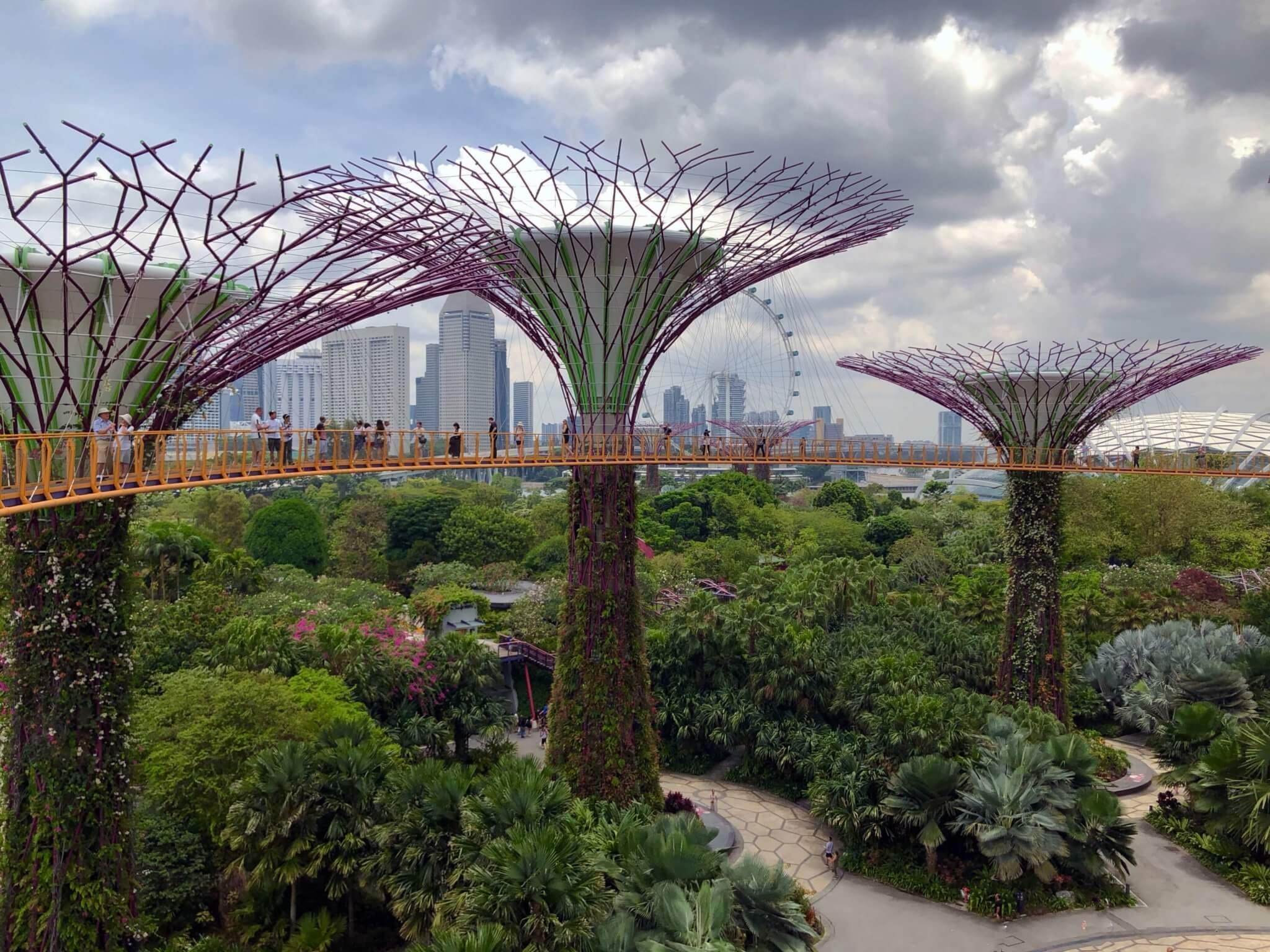 toronto ottawa or montreal to singapore return back. Black Bedroom Furniture Sets. Home Design Ideas